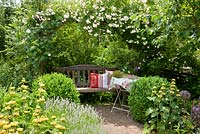 Wooden bench with cushions under a rose arch next to Rosa 'Lykkefund', Buxus and Phlomis russeliana