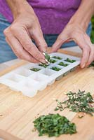 Step by step - making herb ice cubes