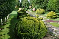 The Thyme Walk with Golden Yew Topiary, Highgrove Garden, August 2007.