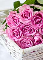 Bunch of pink roses in white basket