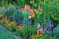 Summer border with Antirrhinum majus 'Animation Tieforange', 'Rocket F1 Bronze', Coreopsis 'Mango Punch', Cosmos sulphureus 'Diabolo', Eupatorium 'Elegant Feather', Salvia farinacea 'Evolution', Tithonia rotundifolia 'Fiesta del Sol', Trachelium caeruleum 'Pandora', Verbena bonariensis and Zinnia angustifolia 'Profusion Orange'