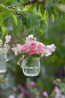 Sweet peas and roses hanging in the glass