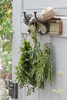 Bouquets of herbs hanging up to dry - Rosemary, Sage, Mint and Thyme