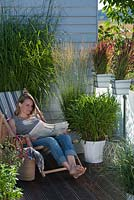 Woman reading in deckchair. Planting includes Miscanthus 'Silberfeder', Imperata 'Red Baron' and Uniola latifolia