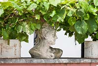 Stone bust with vine