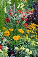 Mixed summer border with Antirrhinum, Pennisetum, Rudbeckia hirta, Zinnia angustifolia and Zinnia elegans