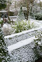 Small garden in snow, with box hedging edged path and conical topiary leading to garden seat
