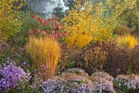 Mixed Autumn border in Adrian's Wood, The Bressingham Gardens, Norfolk, UK. Portrait of autumnal scene.