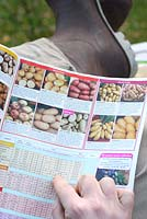 Male gardener selecting potato varieties in a seed catalogue