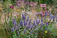 Border of Agastache 'Black Adder', Astrantia major 'Star of Beauty', Cirsium rivulare 'Atropurpureum', Deschampsia cespitosa 'Goldschleier', Helenium Autumnale 'Wyndley', Lythrum salicaria 'Blush', Lythrum virgatum 'Dropmore Purple', Sanguisorba officinalis 'Tanna', Veronicastrum virginicum 'Album'