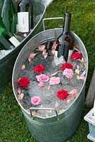 Wine cooling in galvanized ice bucket decorated with cut Roses