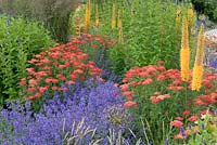 Colourful planting combination of perennials and grasses including Achillea and Eremurus - Floriade 2012