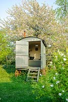 Shepherds hut in wild garden with Prunus avium behind - The Mill House, Little Sampford, Essex