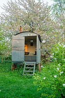 Shepherds hut in wild garden with Prunus avium, wild cherry, behind and Exochorda x macrantha 'The Bride' in foreground - The Mill House, Little Sampford, Essex