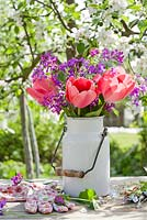 Spring display of tulips and Lunaria annua