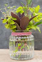 Herb arrangement in glass jar -  Rosemary, Mint, Chives, Thyme, Salvia, Marjoram and Lemon Verbena