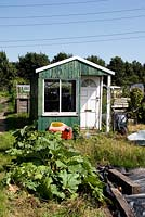 Allotment shed or hut with child's toy car in front and Rheum rhabarbarum, Rhubarb growing on run down plot, Marsh Lane Allotments, Tottenham, London Borough of Haringey.