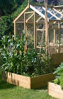 Greenhouse with vegetable beds in summer