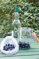 Ingredients for gin with frozen sloe method