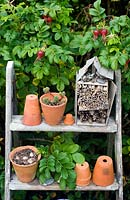 Insect hotel and terracotta pots on steps