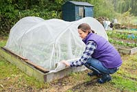 Placing a protective netting over crops in an allotment plot