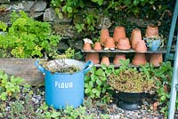 Display of clay pots, herbs and sedums by dry stone wall