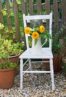 Sunflowers in jug on painted chair in garden