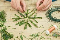 Yew Snowflake. Arranging cuttings into the shape of a snowflake
