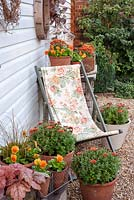 Orange themed Autumn containers with deckchair. Plants include Viola 'Cats Whiskers Orange', Chrysanthemums, Heuchera and Carex
