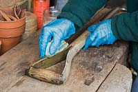 Protecting wooden parts of spade by applying Danish Oil