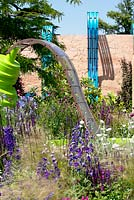 Delphinium planted in garden with waterfeature. The Ecover Garden. RHS Hampton Court Flower Show 2013