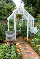 Greenhouse with plants, water butts and tiled pathway, Growing Tastes Allotment, Winchester Growers, RHS Hampton Court Palace Flower Show 2009