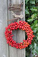 Rosehip wreath
