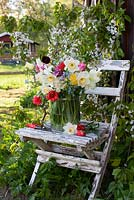 Wooden garden chair with vase of tulips and narcissus cut from garden