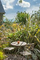 Table and chairs in seaside garden with Phormium tenax