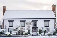Village house with carefully maintained clipped and trained trees and shrubs in narrow front garden. Mahonia, box, yew, euonymus, lonicera etc. Snowy winter scene.