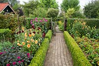 Paved path edged with low box hedge to the entrance gate. Border of dahlias. Tuin de Villa