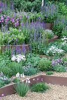Steps softened with alpines and perennials.  - RHS Chelsea Flower Show 2014. 'First Touch' Garden
