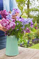 Woman arranging display of flowers in a jug. Syringa vulgaris, Anemone coronaria, Hyacinthoides non-scripta, Lunaria annua alba 'White Honesty'