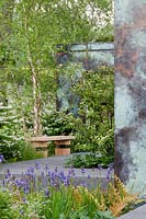 Bench next to Betula nigra, Iris sibirica in foreground. RHS Chelsea flower show 2014 - The Brewin Dolphin Garden, awarded silver gilt