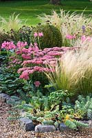 The front garden in autumn with stipa tenuissima, sedum and nerines. Ulting Wick, Essex