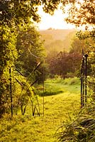 Grass path leading out of grass garden with beautiful iron gates - dawn