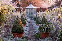 Winter garden in frost - path through the rose garden to a summerhouse with david austin roses and terracotta containers with clipped box