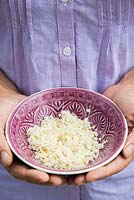 Woman holding bowl of grated horseradish roots.