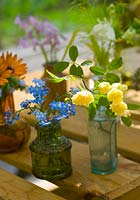Arrangement of cut flowers from garden in greenhouse including Myosotis - Forget me nots and Rosa banksii