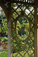 Detail of wooden trellis window with climbing roses. Seend, Wiltshire