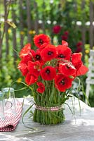 Meadow grass stems wrapped around vase of Papaver rhoeas - Field Poppies