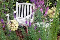 Painted garden chair and table with Linaria and Angelica