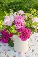 Mixed roses and alchemilla mollis in jug on table in cottage garden