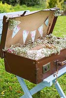 Vintage suitcase to put wedding cards in, decorated with Gypsophila.